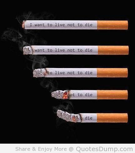 classification essay on quitting smoking