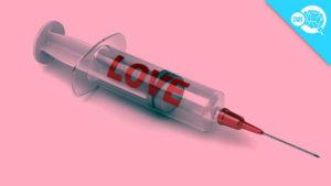 love-addict20202