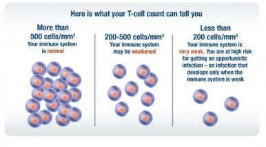 t-cell-count